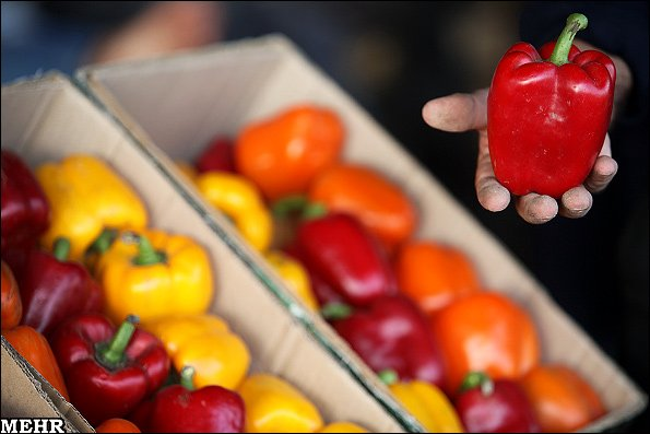 بازار میوه و تره بار تهران